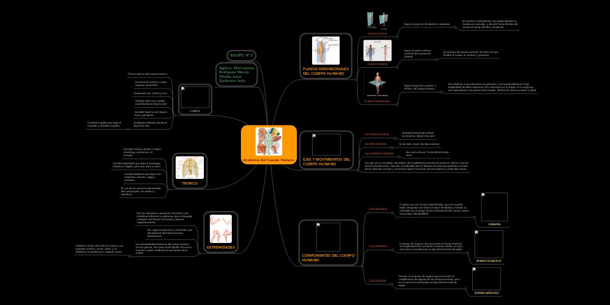 Anatomía del Cuerpo Humano (Ejemplo) - MindMeister