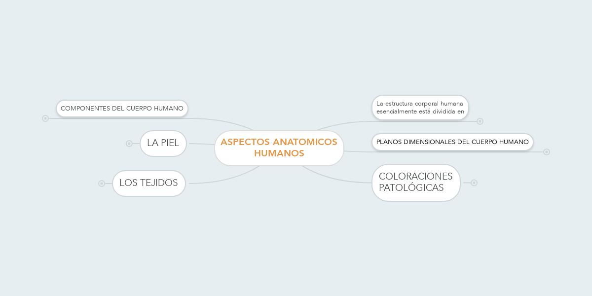 Excepcional Anatomía Y Fisiología Humana Edición Elaine Marieb ...