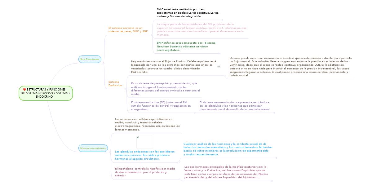 ESTRUCTURAS Y FUNCIONES DELSISTEMA NERVIOSO Y SIS... (Ejemplo ...