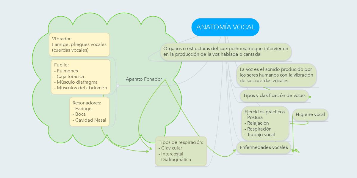ANATOMÍA VOCAL (Ejemplo) - MindMeister
