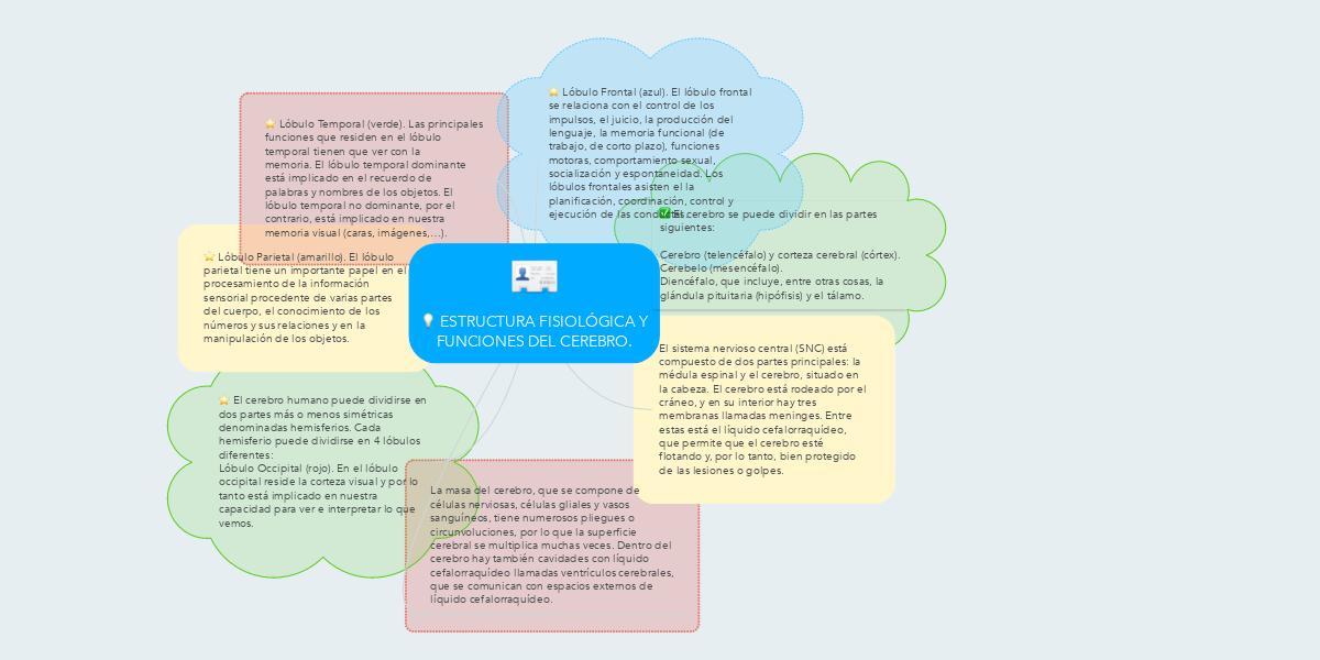 ESTRUCTURA FISIOLÓGICA Y FUNCIONES DEL CEREBRO. (Ejemplo) - MindMeister