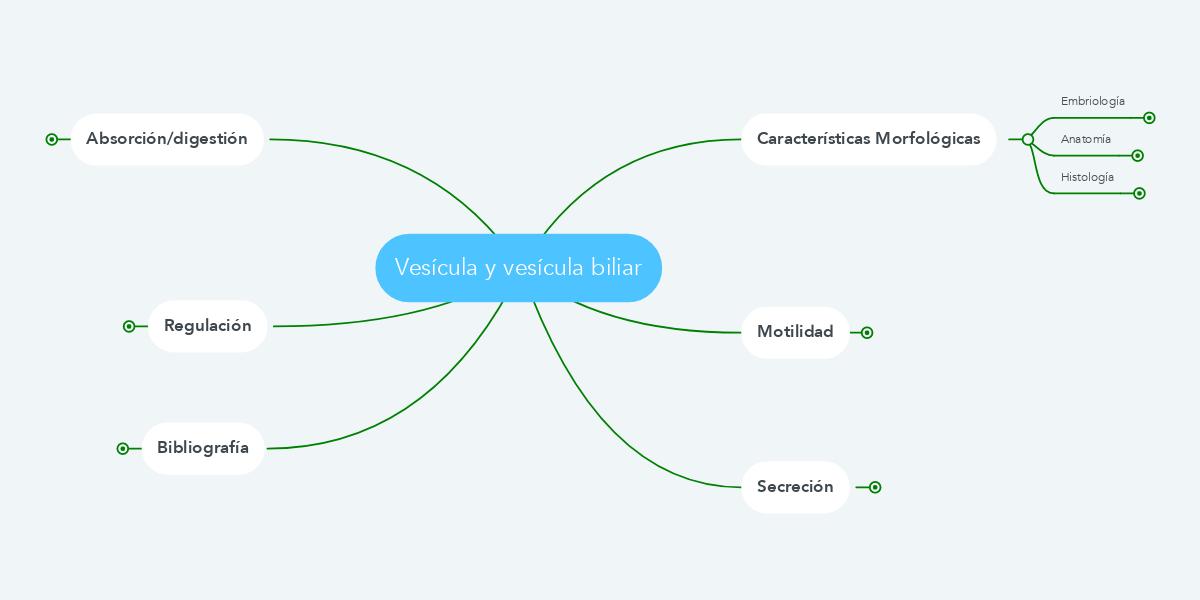 Vesícula y vesícula biliar (Ejemplo) - MindMeister