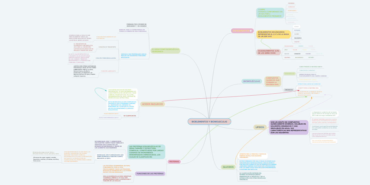 Bioelementos Y Biomoleculas Mindmeister Mapa Mental