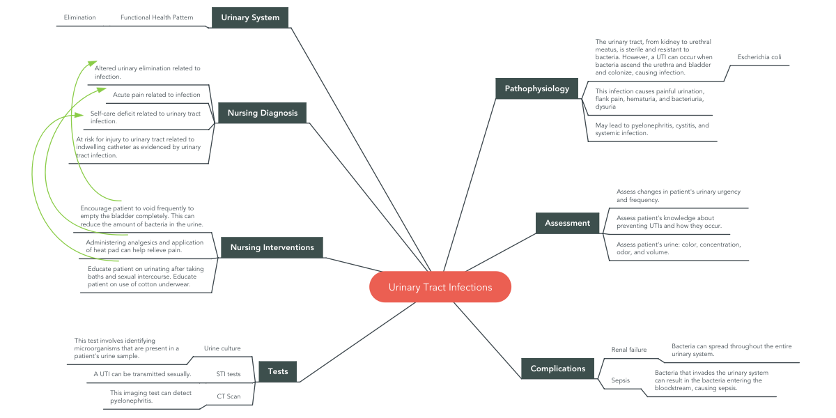 Urinary Tract Infections Mindmeister Mind Map