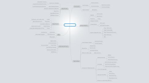 Mind Map: Sleep and Dreams