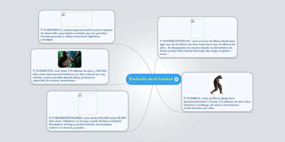 Evolución de el hombre (Example) - MindMeister