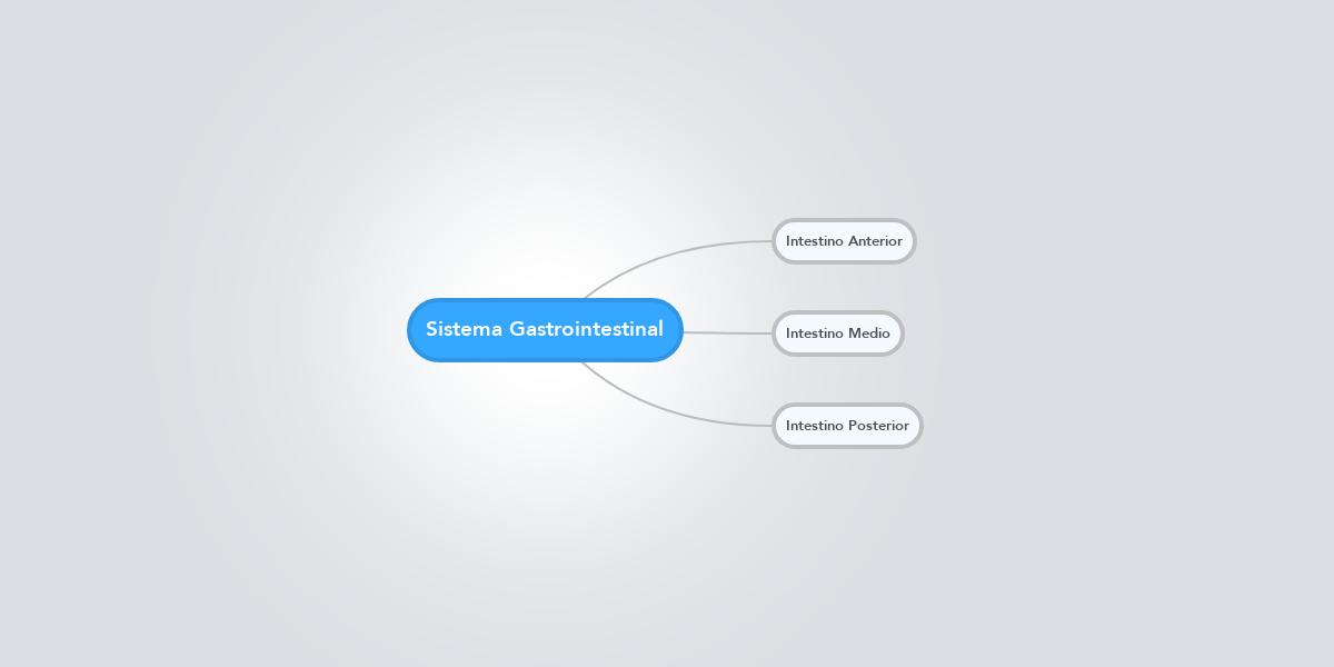 Sistema Gastrointestinal (Example) - MindMeister