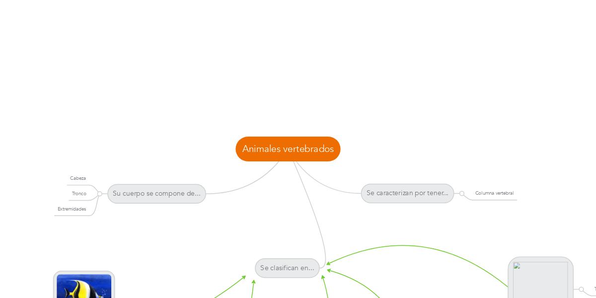 Animales vertebrados (Example) - MindMeister