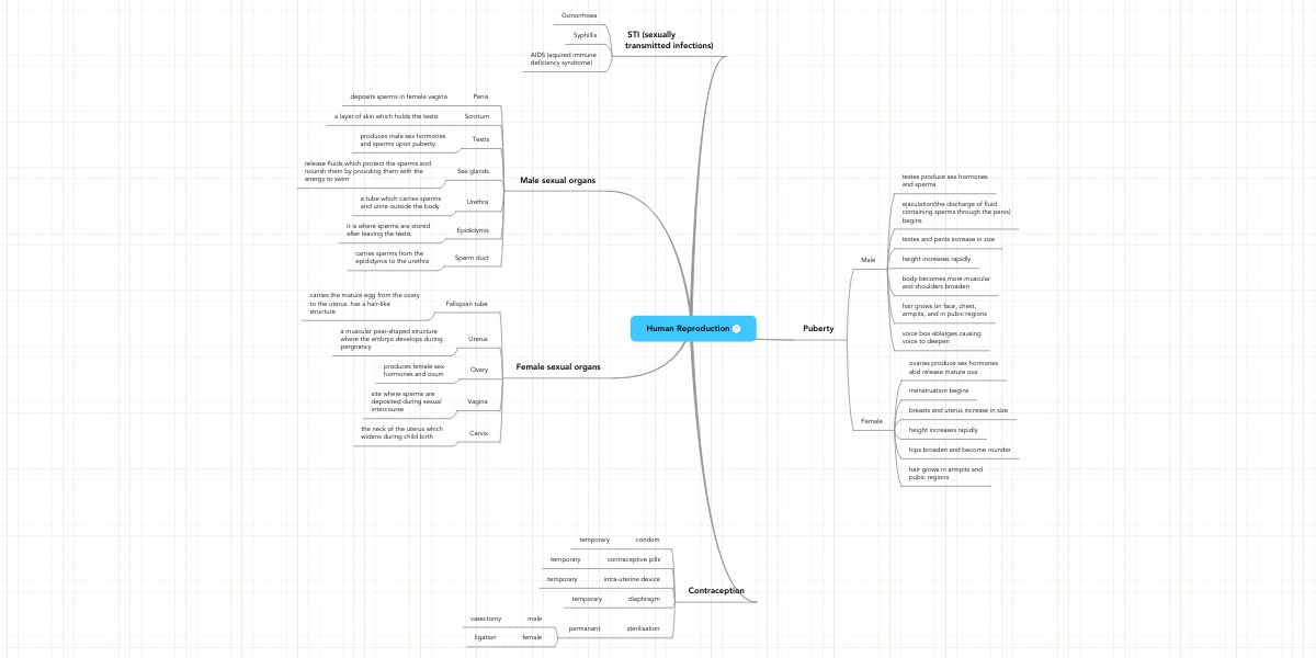 Reproductive System Concept Map.Human Reproduction Mindmeister Mind Map