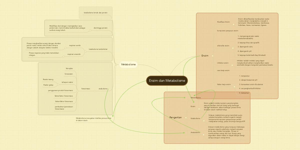 Enzim dan metabolisme example mindmeister ccuart Choice Image