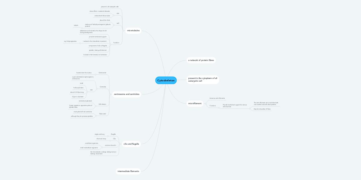Cytoskeleton | MindMeister Mind Map