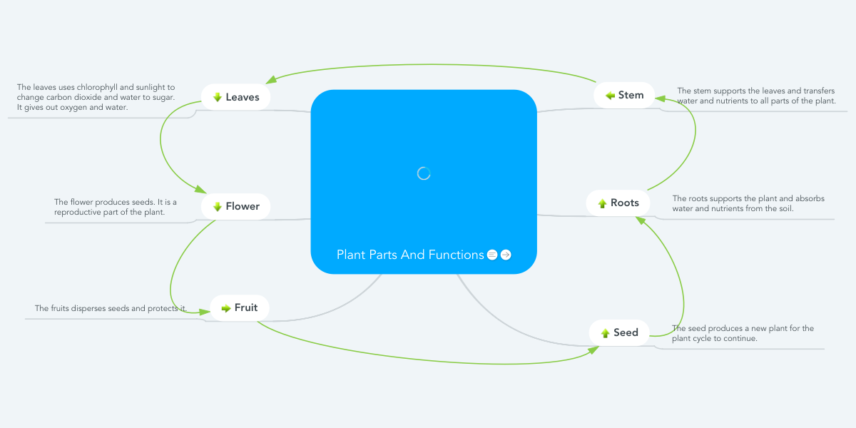 Flower Concept Map.Plant Parts And Functions Mindmeister Mind Map