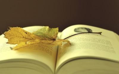 Books 00307721