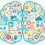 Cerebro conexion