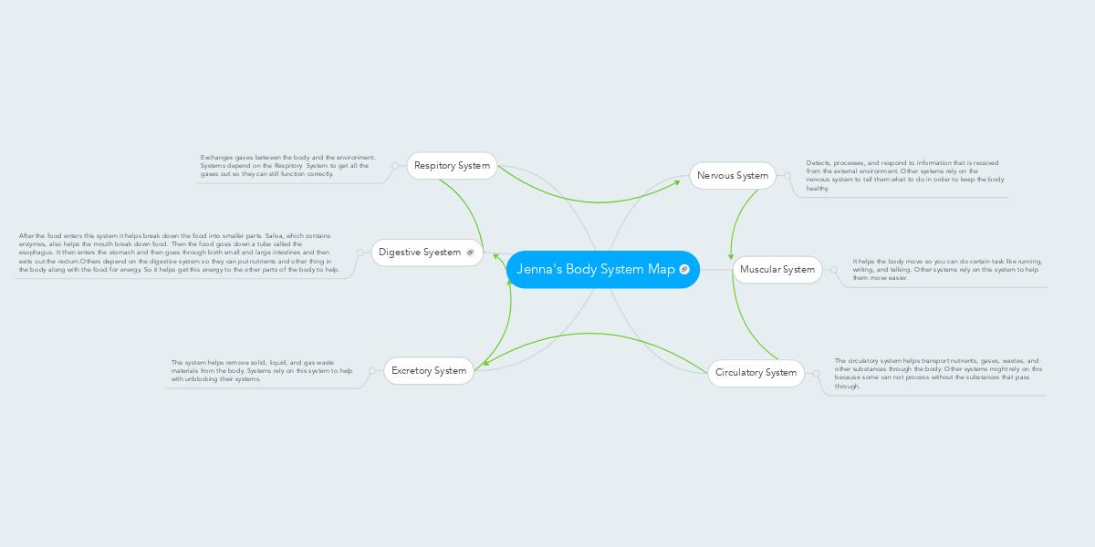 Jennas Body System Map Exemple Mindmeister