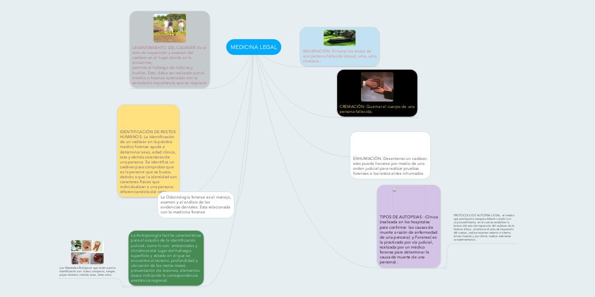 MEDICINA LEGAL (Exemple) - MindMeister