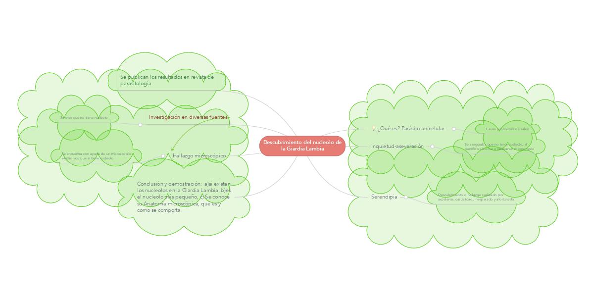 Descubrimiento del nucleolo de la Giardia Lambia (Exemple) - MindMeister