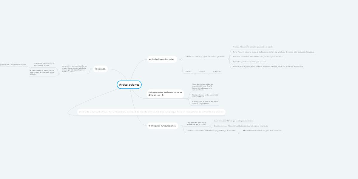 Articulaciones (Exemple) - MindMeister