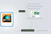 Mind map: Proyectos Educativos 2011