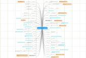 Mind map: Situation Promotion DUT 2011  48 diplômés