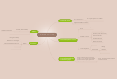 Mind map: PARECER 251/62 CFE