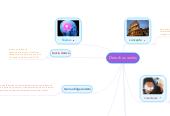 Mind map: Derechos reales