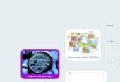 Mind map: Mapa Conceptual Celular