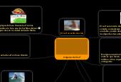 Mind map: Origenes del Surf