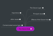Mind map: The Ozone Hole