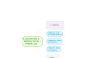 Mind map: rétroactions& évaluations