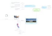 Mind map: Political Representation