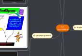 Mind map: Les quadrilatères