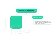Mind map: Clasificación de plantas