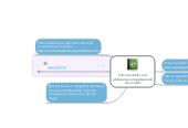 Mind map: Como contactar a un profesor para la elaboración de un CML