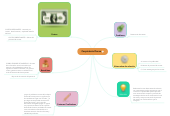Mind map: PERCEPCION