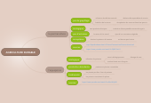 Mind map: AGRICULTURE DURABLE