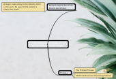 Mind map: Introduction and Overview of Inter-Generational Wealth Transfer