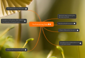 Mind map: The Exclusionary Rule