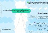 Mind map: العلاقة بين أنواع التوحيد الثلاثة والفرق بينها