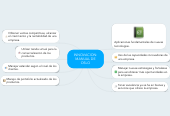 Mind map: INNOVACION: MANUAL DE OSLO