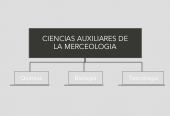 Mind map: CIENCIAS AUXILIARES DE LA MERCEOLOGIA
