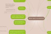 Mind map: Redes, tipos y caracteristicas