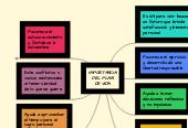 Mind map: IMPORTANCIA DEL PLAN DE VIDA