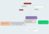 Mind map: How do ecological footprints work?