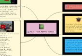 Mind map: Presentación del  PLE de  Paula Andrea Garcia Sandoval Grupo_446