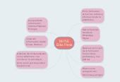 Mind map: Mi PLEErika Perez