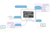 Mind map: Antecedentes