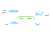 Mind map: CURRÍCULO FLEXIBLE