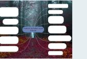 Mind map: I Tedeschi, da barbari a padri d'Europa