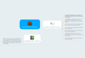 Mind map: ENTREVISTA DE TRABAJO